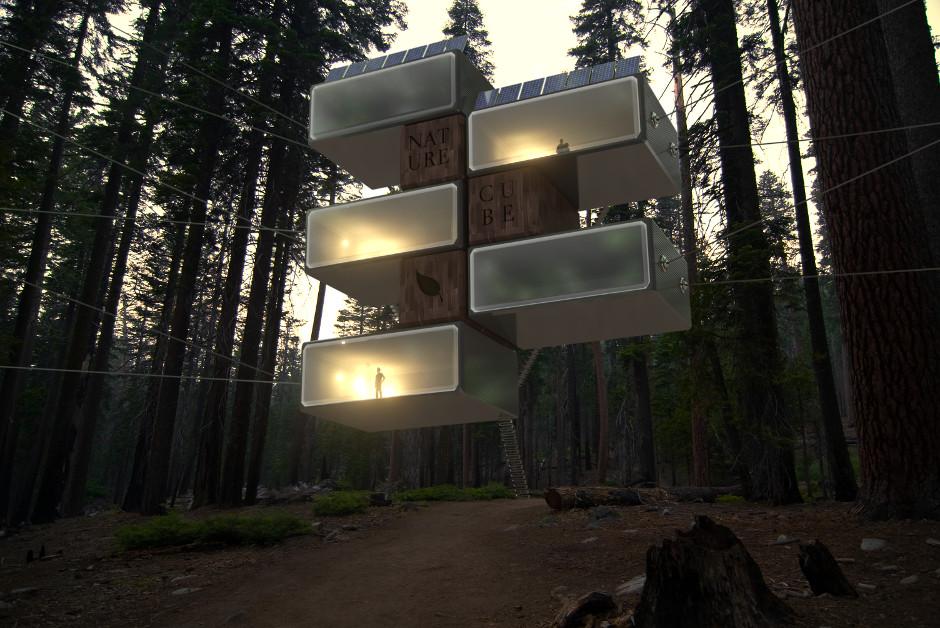 3D Forest Archviz Rendering